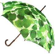 Фирменные зонтики по выгодным ценам!